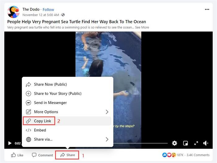 Copy Facebook Live Video Link