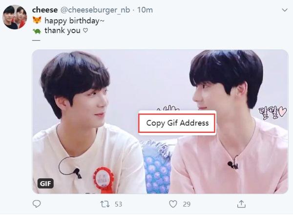 Copy GIF Address