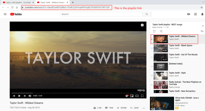 Copy YouTube Playlist Link