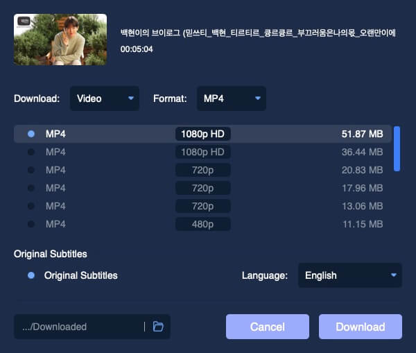 Download YouTube Video with Subtitle Mac