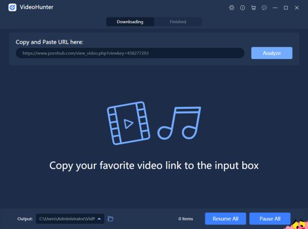 Paste Pornhub Video URL to VideoHunter