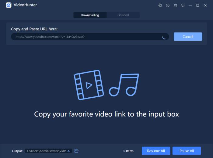 Paste YouTube Video URL to VideoHunter