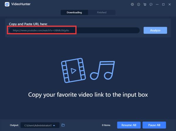 Paste Workout Video URL to VideoHunter